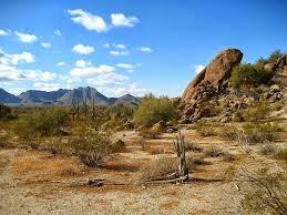 desert autumn 1